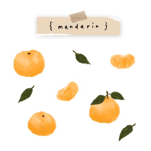 插畫小教室 Lesson 2 水彩橘子插畫